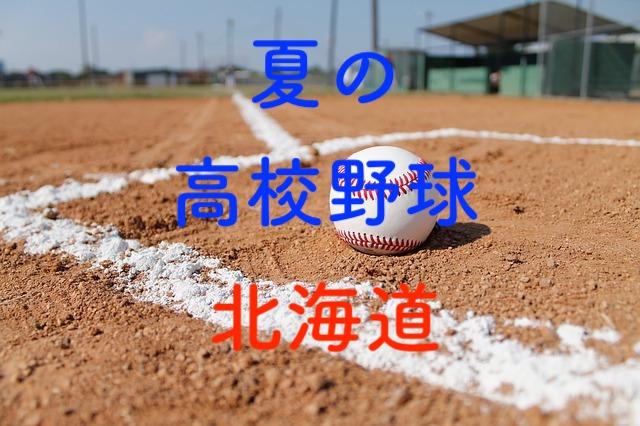 南 北海道 高校 野球 2019 組み合わせ